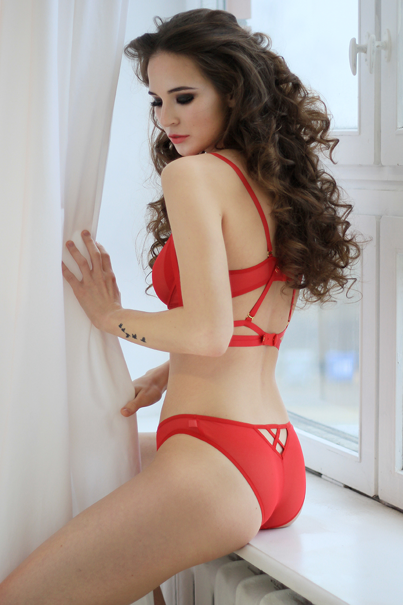 Red Mesh Panties With X In The Back