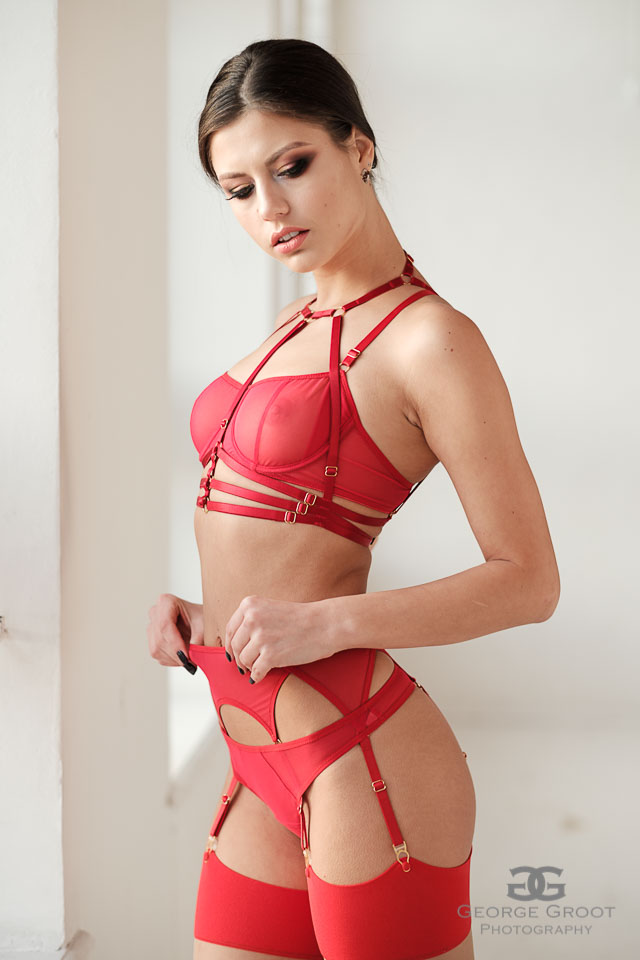 Red Mesh Six Strap Garter Belt With Golden Details